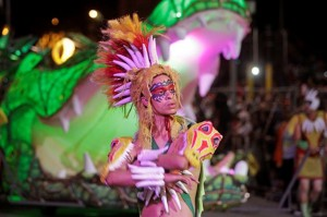 Ecosafety Street Parades and Events - Cape Town Carnival